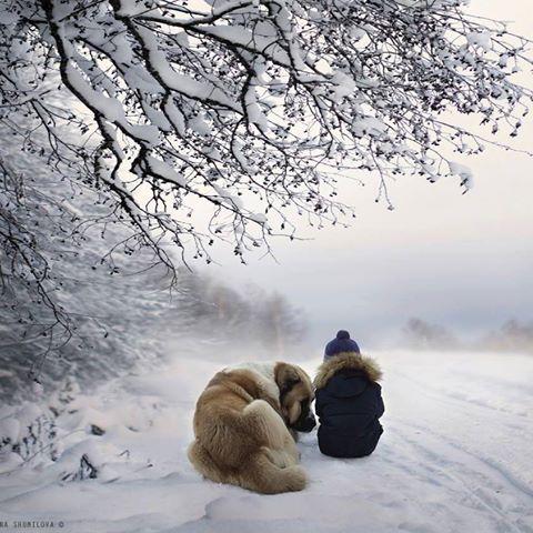 enfant et chien 2.jpg