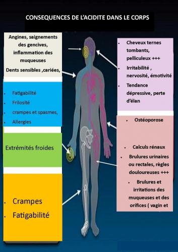 corps humain acidite.jpg