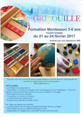 formation montessori programme.jpg