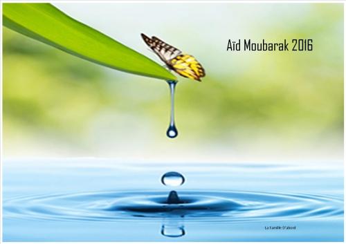 aid moubarak 2016.jpg